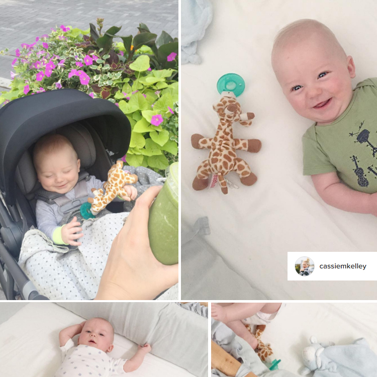 cassiemkelley_instagram_son_ward_wubbanub_giraffe_pacifier